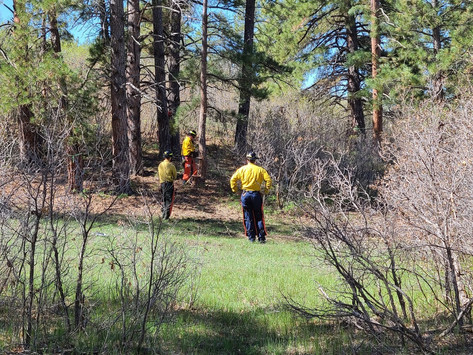 Plan and Prepare for Wildfires