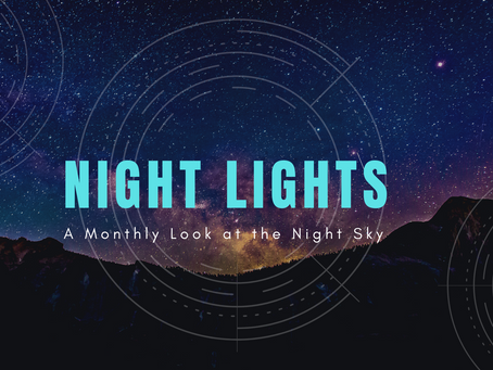 Night Lights: January 2021