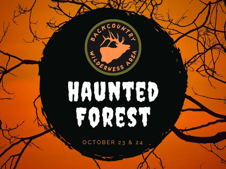 Quick Guide: Haunted Forest 2020