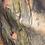 Thumbnail: Beautiful Art Scarf