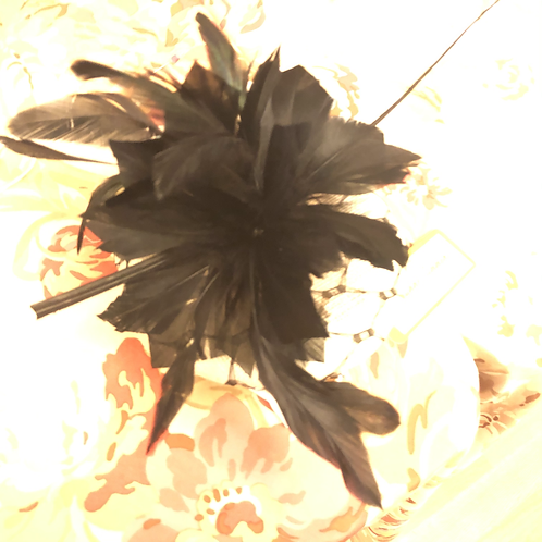 black feathered headpiece