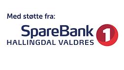 Sparebanken1.png