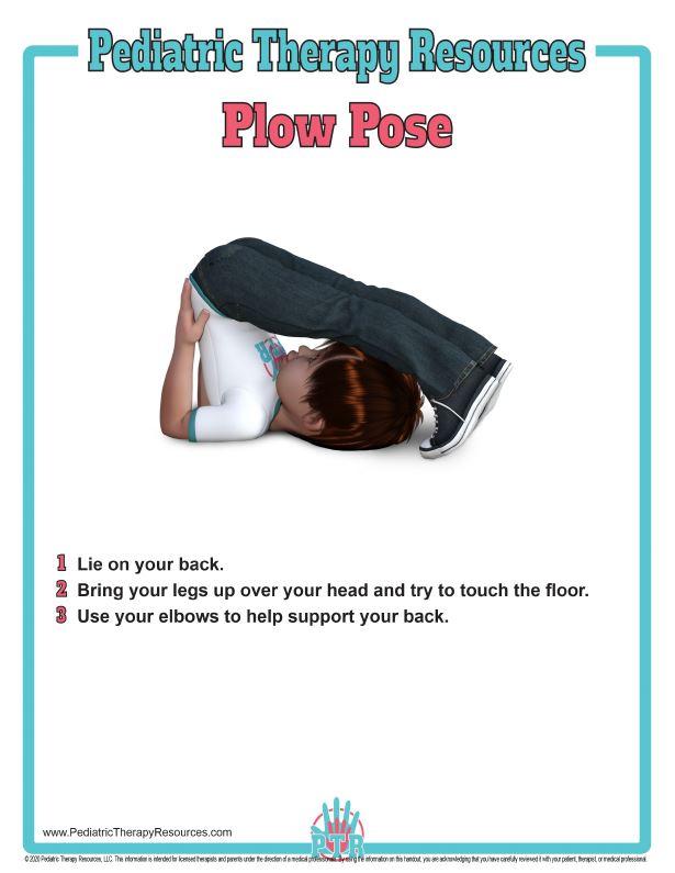 PTR_Plow_Pose