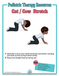 PTR_Cat-Cow_Stretch