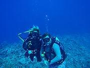 Abyss Dive Nelson NZ Scuba Courses