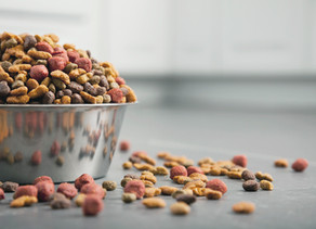 A potted history of pet food