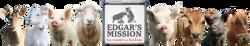 Edgar's Mission Farm Sanctuary