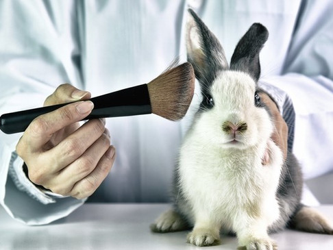 China's NMPA approves two animal-free cosmetic testing methods but still a long way to go