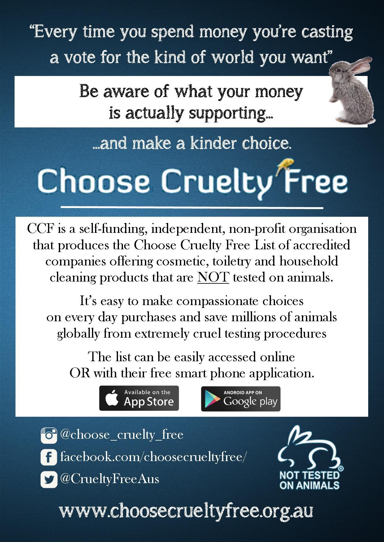 Make a Kinder Choice - Flyer