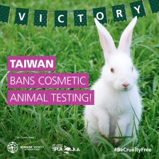 Taiwan has joined the growing global momentum to end cosmetics cruelty