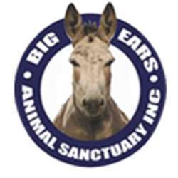 Big Ears Animal Sanctuary