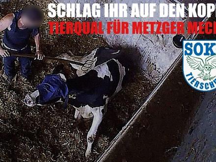 SOKO Tierschutz Bürgergespräch - Was ist los im LK.Unna?!