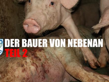 Der Bauer von Nebenan Teil 2 - Tierschutzkatastrophe vom Amt