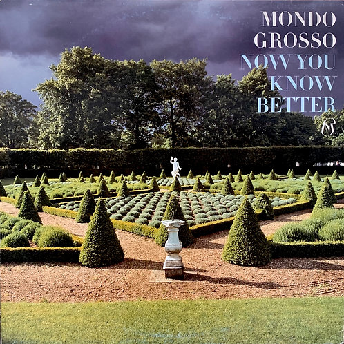 Mondo Grosso / Now You Know Better
