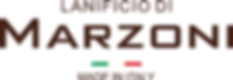 Marzoni logo.png