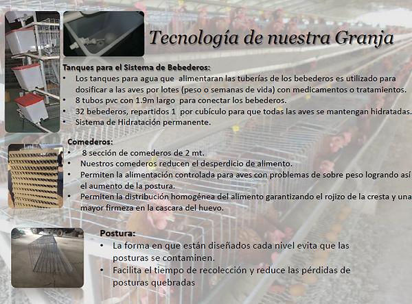 Granja de Gallinas, Tecnología