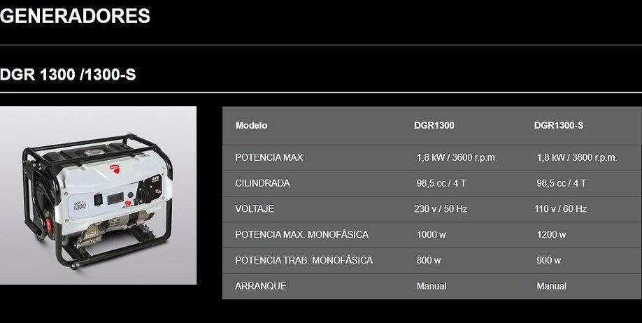 Generador DGR 1300 1300-S.JPG