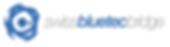 Logo - Swiss Bluetec Bridge.png