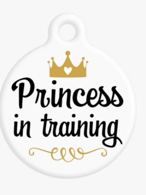Princess In Training ID Tag