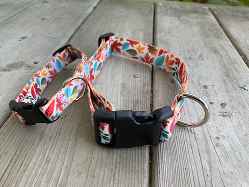 Fall Adjustable BBS Collar