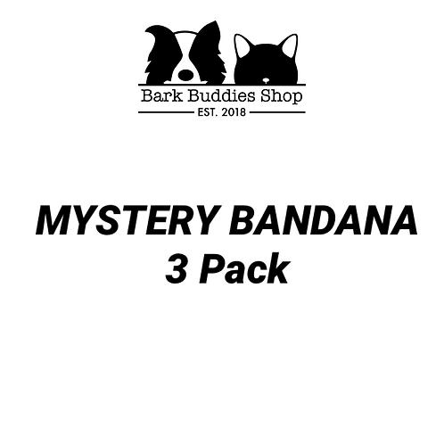 Mystery Bandana 3 Pack
