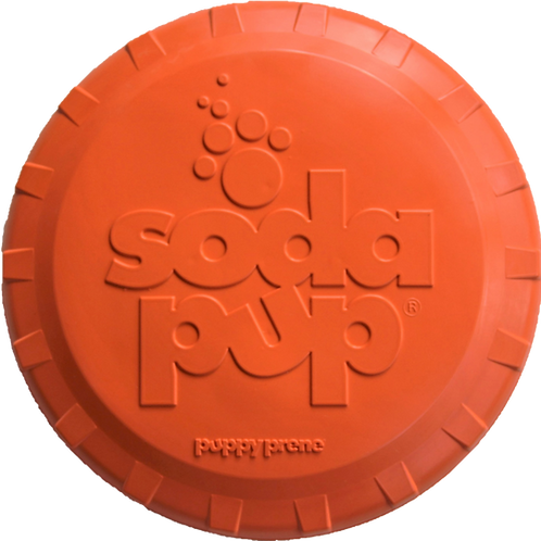 Orange Frisbee