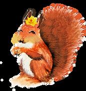 écureuil sans calques.png