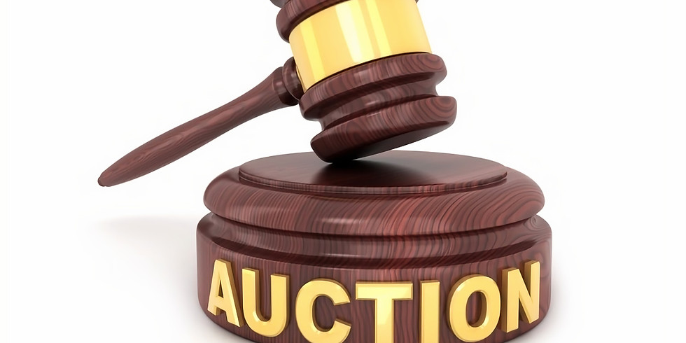 FVMC Online Auction: Spring Cleaning