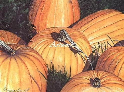Manuel's Pumpkins