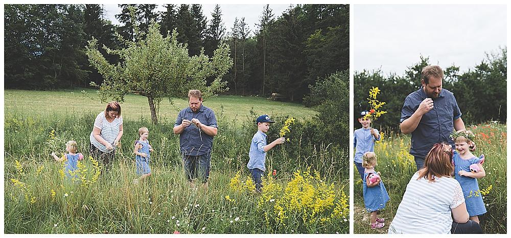 familie pflückt Blumenstrauß auf Blumenwiese