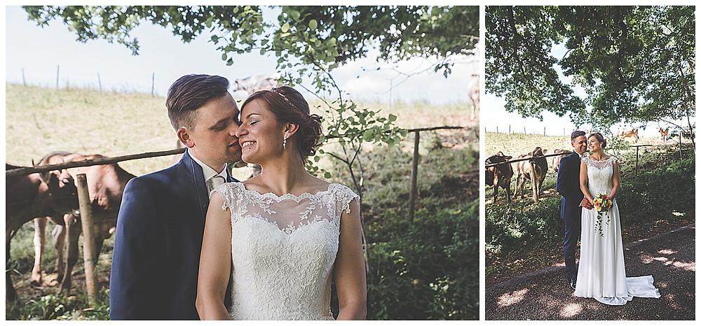 Brautpaarshooting im Allgäu Hochzeitsfotograf  mit Kühen