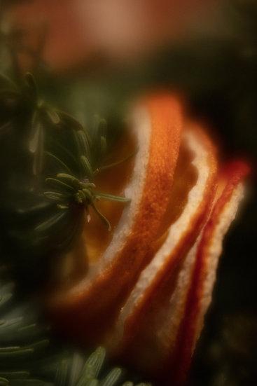 A6 Card - Oranges