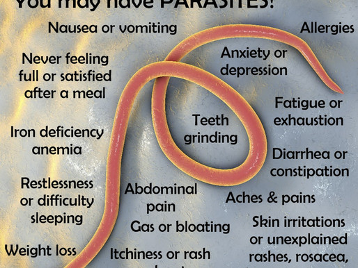 Infected With Parasites? It Is Way More Common Than You Think.