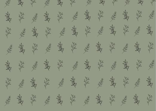 N2F leaf pattern.png