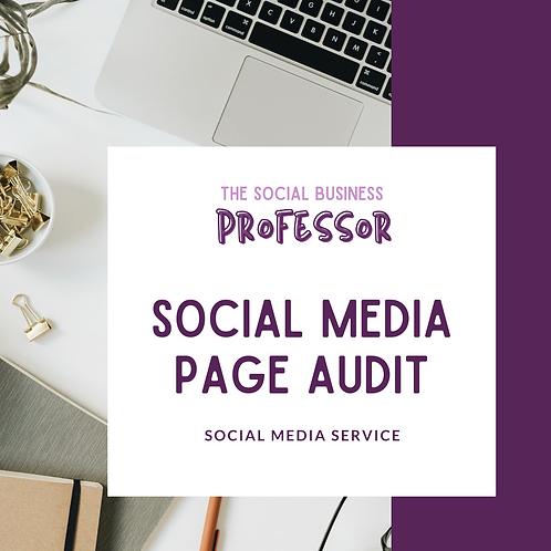 Social Media Page Audit