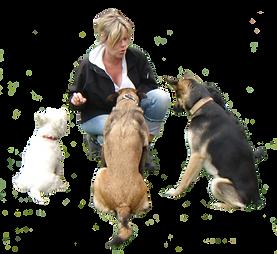 Birgid mit Hunde.png