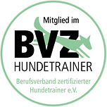 Logo BZZ.png