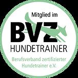 Logo BZZ.png