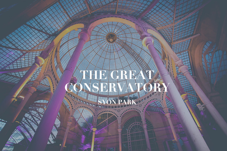The Great Conservatory Party by Sophie A
