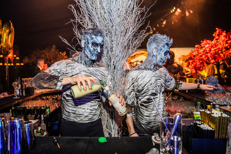 Game-of-thrones-marquee-party-theme-ice-fire