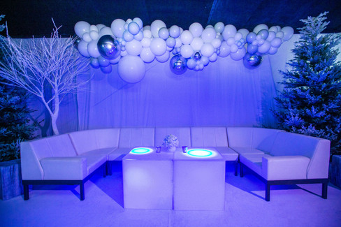 Game-of-thrones-marquee-party-private-theme-ice-fire