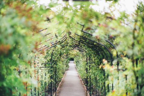 Nonsuch-Mansion-Wedding-SurreyWedding