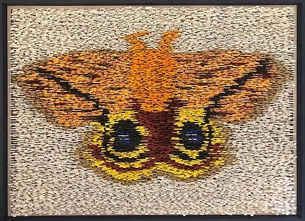 IO Moth 1