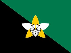 Flag_of_Enga.png