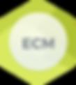 ECM_2x.png