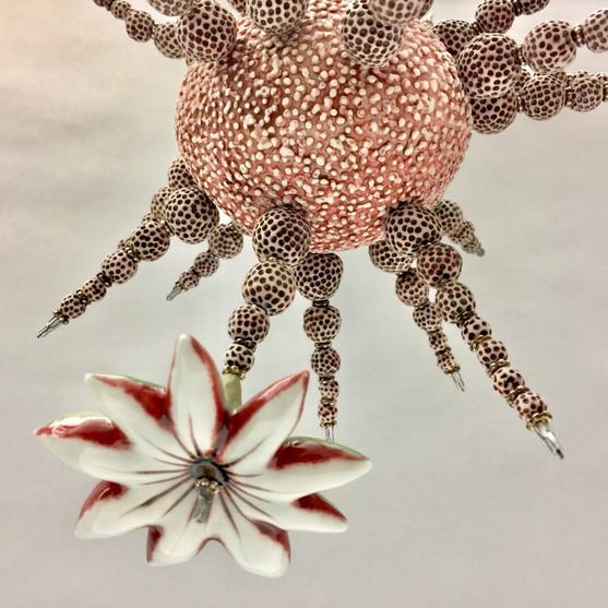 diatomenblüte_3.jpeg