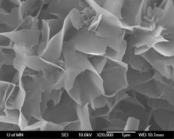 Calcium Phosphate Cement