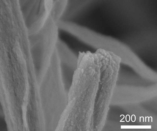 Intrafibrillar Mineralized Collagen