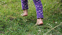 A Natureza é a nossa Medicina! Andar descalço é indicação médica!