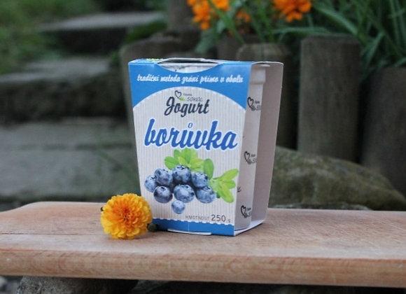 Borůvkový Jogurt 250g